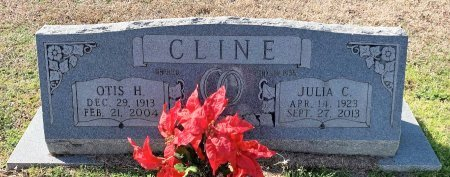 CLINE, JULIA C - Morris County, Texas | JULIA C CLINE - Texas Gravestone Photos