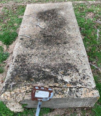 COOK, IDA B - Morris County, Texas | IDA B COOK - Texas Gravestone Photos