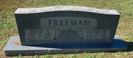 FREEMAN, DAVID O - Morris County, Texas | DAVID O FREEMAN - Texas Gravestone Photos