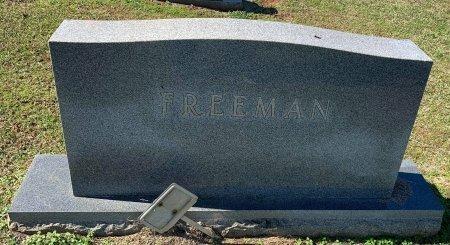 FREEMAN, FAMILY MARKER - Morris County, Texas | FAMILY MARKER FREEMAN - Texas Gravestone Photos