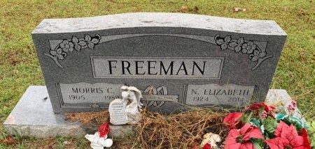 FREEMAN, N ELIZABETH - Morris County, Texas | N ELIZABETH FREEMAN - Texas Gravestone Photos