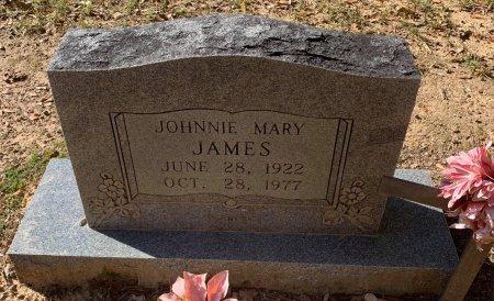 JAMES, JOHNNIE MARY - Morris County, Texas | JOHNNIE MARY JAMES - Texas Gravestone Photos