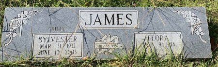 JAMES, SYLVESTER - Morris County, Texas | SYLVESTER JAMES - Texas Gravestone Photos