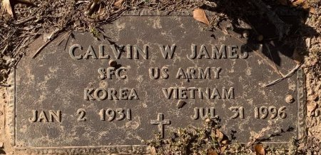 JAMES (VETERAN 2WARS), CALVIN W - Morris County, Texas | CALVIN W JAMES (VETERAN 2WARS) - Texas Gravestone Photos
