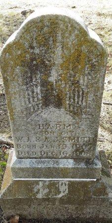 SMITH, HARM - Morris County, Texas | HARM SMITH - Texas Gravestone Photos