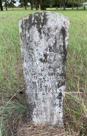 WHITEHEAD, MATTIE - Morris County, Texas | MATTIE WHITEHEAD - Texas Gravestone Photos