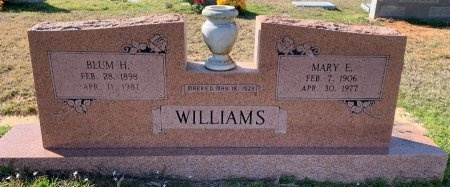 WILLIAMS, MARY E - Morris County, Texas | MARY E WILLIAMS - Texas Gravestone Photos