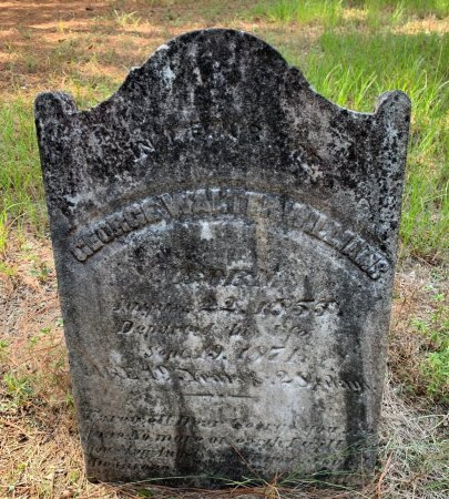 WILLIAMS, GEORGE WALTER - Morris County, Texas | GEORGE WALTER WILLIAMS - Texas Gravestone Photos