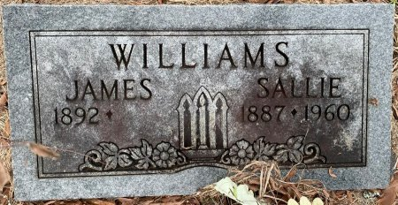 WILLIAMS, JAMES - Morris County, Texas | JAMES WILLIAMS - Texas Gravestone Photos