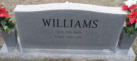 WILLIAMS, JOYCE ANN (BACKVIEW) - Morris County, Texas | JOYCE ANN (BACKVIEW) WILLIAMS - Texas Gravestone Photos