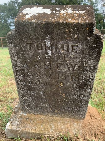 WISE, TOMMIE - Morris County, Texas | TOMMIE WISE - Texas Gravestone Photos