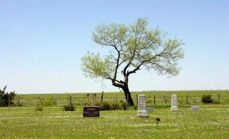 *CEMETERY VIEW,  - Nolan County, Texas |  *CEMETERY VIEW - Texas Gravestone Photos