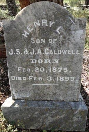 CALDWELL, HENRY L. - Palo Pinto County, Texas   HENRY L. CALDWELL - Texas Gravestone Photos
