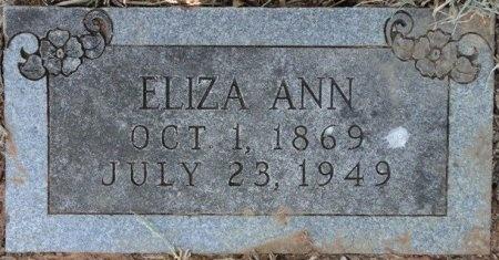 HAMMONS, ELIZA ANN - Palo Pinto County, Texas | ELIZA ANN HAMMONS - Texas Gravestone Photos