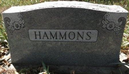 HAMMONS, FAMILY STONE - Palo Pinto County, Texas | FAMILY STONE HAMMONS - Texas Gravestone Photos