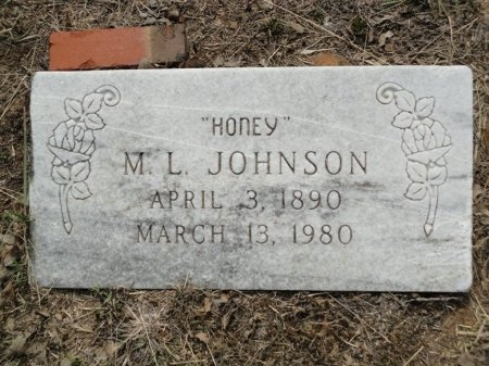 JOHNSON, M. L. - Palo Pinto County, Texas | M. L. JOHNSON - Texas Gravestone Photos