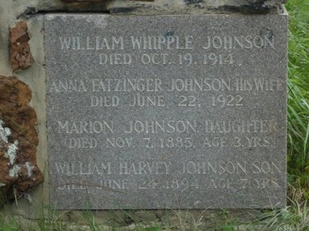 JOHNSON, WILLIAM HARVEY - Palo Pinto County, Texas | WILLIAM HARVEY JOHNSON - Texas Gravestone Photos