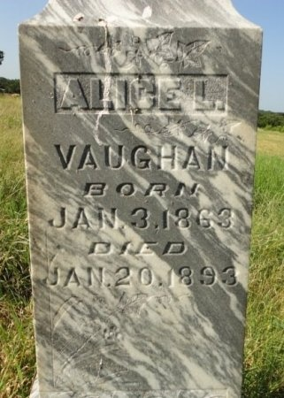 VAUGHAN, ALICE L. (CLOSE UP) - Palo Pinto County, Texas   ALICE L. (CLOSE UP) VAUGHAN - Texas Gravestone Photos