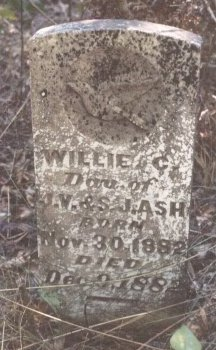 ASH, WILLIE C. - Panola County, Texas | WILLIE C. ASH - Texas Gravestone Photos