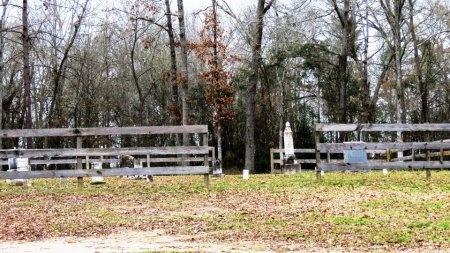 *CEMETERY VIEW,  - Panola County, Texas |  *CEMETERY VIEW - Texas Gravestone Photos