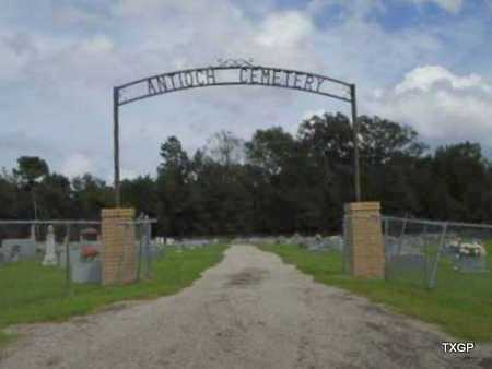 *GATE AND OVERVIEW,  - Panola County, Texas |  *GATE AND OVERVIEW - Texas Gravestone Photos