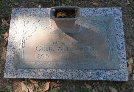 ALEXANDER, OLLIE L. - Parker County, Texas | OLLIE L. ALEXANDER - Texas Gravestone Photos