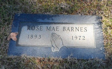 BARNES, ROSA MAE - Parker County, Texas | ROSA MAE BARNES - Texas Gravestone Photos