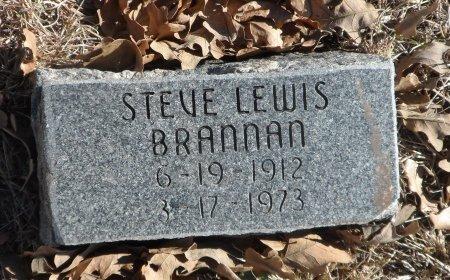 BRANNAN, STEVE LEWIS - Parker County, Texas | STEVE LEWIS BRANNAN - Texas Gravestone Photos
