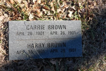 BROWN, CARRIE(INFANT) - Parker County, Texas   CARRIE(INFANT) BROWN - Texas Gravestone Photos