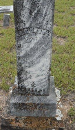 BROWN, SOLOMON H. - Parker County, Texas   SOLOMON H. BROWN - Texas Gravestone Photos