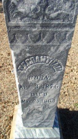 GRANTHAM, T. F. - Parker County, Texas | T. F. GRANTHAM - Texas Gravestone Photos