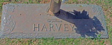 MCCLENDON HARVEY, WILLIE ODESSA - Parker County, Texas | WILLIE ODESSA MCCLENDON HARVEY - Texas Gravestone Photos