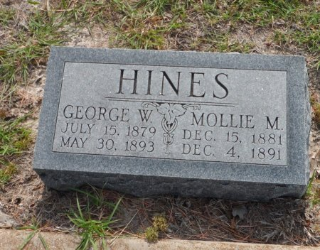 HINES, MOLLIE - Parker County, Texas | MOLLIE HINES - Texas Gravestone Photos