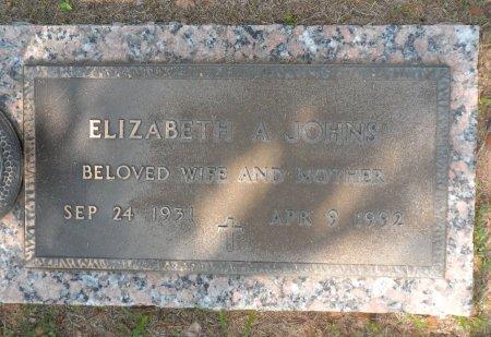 GRIFFIN JOHNS, ELIZABETH ANN - Parker County, Texas   ELIZABETH ANN GRIFFIN JOHNS - Texas Gravestone Photos