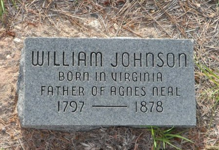 JOHNSON, WILLIAM - Parker County, Texas | WILLIAM JOHNSON - Texas Gravestone Photos