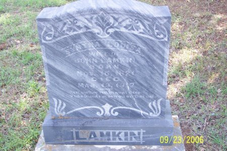 LAMKIN, SUNTHA LOUISA - Parker County, Texas   SUNTHA LOUISA LAMKIN - Texas Gravestone Photos