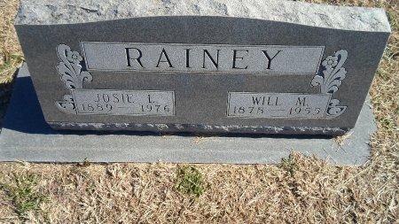 ALLISON RAINEY, JOSEPHINE LORENE - Parker County, Texas   JOSEPHINE LORENE ALLISON RAINEY - Texas Gravestone Photos
