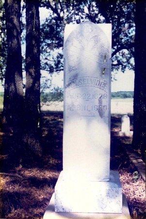 SELVIDGE, W N - Parker County, Texas | W N SELVIDGE - Texas Gravestone Photos