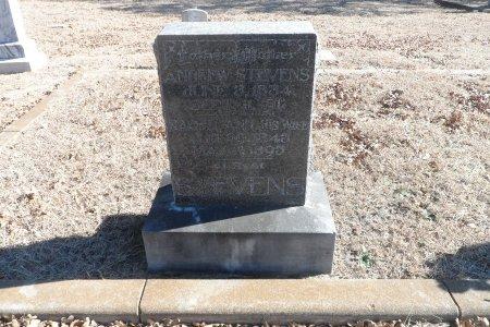 THOMAS STEVENS, RACHEL ANN - Parker County, Texas | RACHEL ANN THOMAS STEVENS - Texas Gravestone Photos