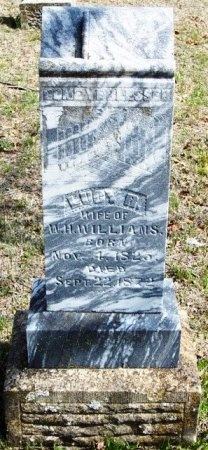 CAPERTON WILLIAMS, LUCY R. - Parker County, Texas | LUCY R. CAPERTON WILLIAMS - Texas Gravestone Photos