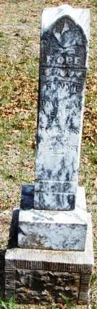 YEARY, FANNIE - Parker County, Texas | FANNIE YEARY - Texas Gravestone Photos