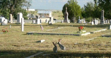 *OVERVIEW,  - Presidio County, Texas |  *OVERVIEW - Texas Gravestone Photos