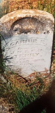 TERRY, CARRIE E. - Rains County, Texas | CARRIE E. TERRY - Texas Gravestone Photos
