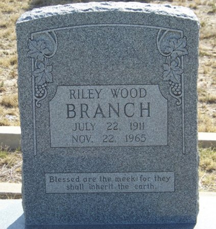 BRANCH, RILEY WOOD - Reagan County, Texas | RILEY WOOD BRANCH - Texas Gravestone Photos