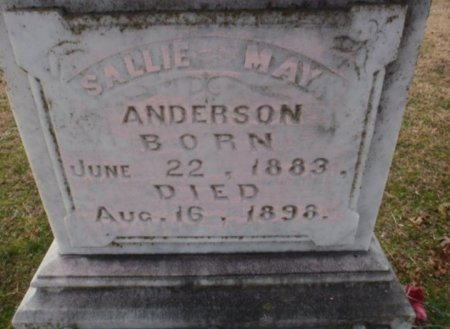 ANDERSON, SALLIE MAY (CLOSEUP) - Red River County, Texas | SALLIE MAY (CLOSEUP) ANDERSON - Texas Gravestone Photos