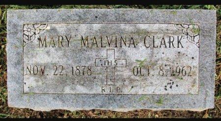 CLARK, MARY MALVINA - Red River County, Texas | MARY MALVINA CLARK - Texas Gravestone Photos