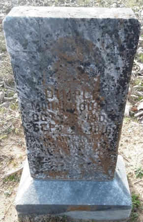 MONKHOUSE, DIMPLE - Red River County, Texas | DIMPLE MONKHOUSE - Texas Gravestone Photos