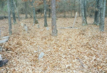*OVERVIEW, . - Red River County, Texas | . *OVERVIEW - Texas Gravestone Photos