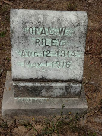 RILEY, OPAL W. - Red River County, Texas   OPAL W. RILEY - Texas Gravestone Photos