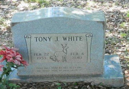 WHITE, TONY J - Red River County, Texas | TONY J WHITE - Texas Gravestone Photos
